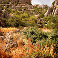 El Torcal Rock Formations by Mal Bray