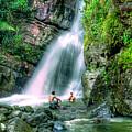 El Yunque Rain Forest Waterfall by David Zanzinger