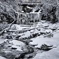 Elakala Falls by Erika Fawcett