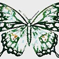 Election 2020 Presidential Candidate Catherien Lott Usa Green Butterfly by Catherine Lott