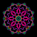 Electric Fractal Flower by Ruth Moratz
