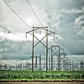 Electric Lines And Weather by Marilyn Hunt