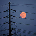 Electric Moon by Richard Reeve