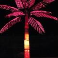 Electric Palm by Florene Welebny