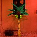 Electric Palm Tree by Rich Iwasaki