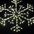 Electric Snowflake by Rauno Joks