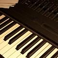 Electronic Keyboard by Ann Horn