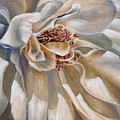 Elegant by Rebecca Hauschild