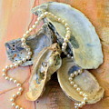 Elegant Treasures From The Sea by Carla Parris