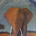 Elephant by Andrew Corl