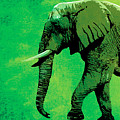 Elephant Animal Decorative Green Wall Poster 4 by Diana Van
