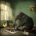 Elephant Chess by Ethiriel  Photography