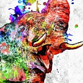Elephant Colored Grunge by Daniel Janda