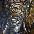 Elephant Faces Of Nature Series by Mary Jo Zorad