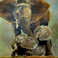 Elephant Familly by Peter Kulik