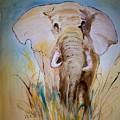 Elephant In The Field by Leo Gordon