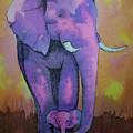 My Elephant   by Johnny McNabb