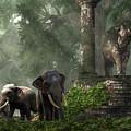 Elephant Kingdom by Daniel Eskridge