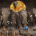 Elephant Run by Maria Astedt
