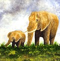 Elephants - Mother And Baby by Michael Vigliotti