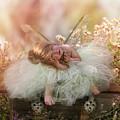 Elf Baby by Cindy Grundsten
