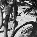 Elgin Bicycle Shadow by Lauri Novak