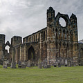 Elgin Cathedral - East View by Mark Smith
