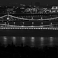 Elizabeth And Liberty Bridges Budapest Bw by Joan Carroll