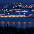 Elizabeth And Liberty Bridges Budapest by Joan Carroll
