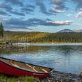 Elk Beach Memories by Matthew Irvin