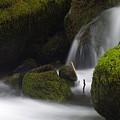 Elk Creek Detail 1 by Ken Dietz