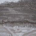 Elk Crossing The Refuge by Lorraine Gould-Zoller