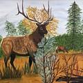 Elk by Francine Spagnuolo