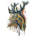 Elk Head by Marian Voicu