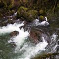 Elkhorn Creek 2 by Ingrid Smith-Johnsen