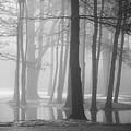 Ellacoya Fog - January Thaw by Robert Clifford