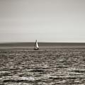 Elliott Bay Sailing by Savanah Plank