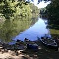 Elm Bank - Boats by Nancy Ferrier