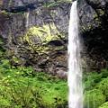 Elowah Falls by Albert Seger