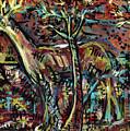Elusive by Robert Wolverton Jr