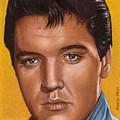 Elvis 24 1965 by Rob De Vries