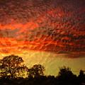 Embossed Sunrise by Joyce Dickens