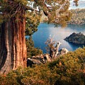 Emerald Bay Overlook by Norman Andrus