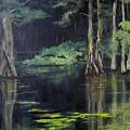 Emerald Bayou by Barbara O'Toole