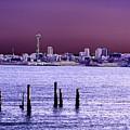 Emerald City Skyline by Tim Allen