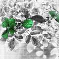 Emerald Green Of Ireland by Lance Sheridan-Peel