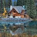 Emerald Lake Cilantro by Adam Jewell