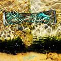 Emerald Ripples by Charles Stuart