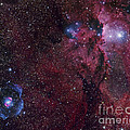Emission Nebula Ngc 6188 Star Formation by Robert Gendler