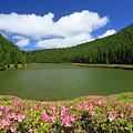 Empadadas Lakes by Gaspar Avila